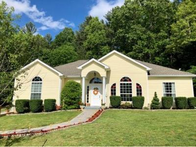 Jonesborough Single Family Home For Sale: 211 Big Bear Lane