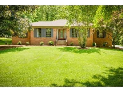 Kingsport Single Family Home For Sale: 1909 Birchwood Rd