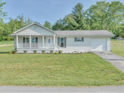 Washington-Tn County Single Family Home For Sale: 128 Barnes St