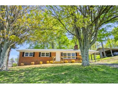 Gray Single Family Home For Sale: 112 Hales Chapel Rd