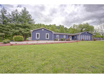 Jonesborough Single Family Home For Sale: 248 Dark Hollow Road