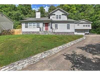 Kingsport Single Family Home For Sale: 2165 Longreen Road