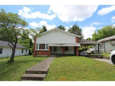 Single Family Home For Sale: 919 Pine Grove Ave.
