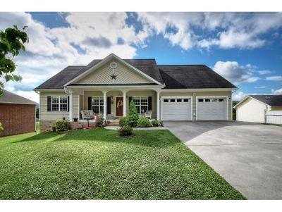 Kingsport Single Family Home For Sale: 334 Pactolus Rd