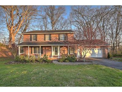 Johnson City TN Single Family Home For Sale: $285,000