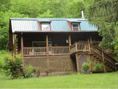 Unicoi Single Family Home For Sale: 580 Harry Hill Lane