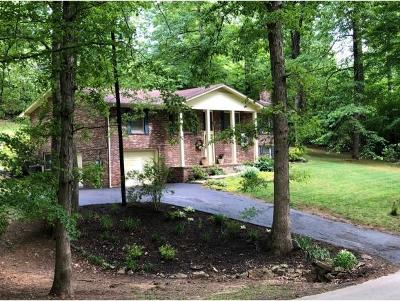 Blountville Single Family Home For Sale: 478 Hooker Road