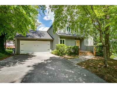 Kingsport Single Family Home For Sale: 2208 Louita Drive