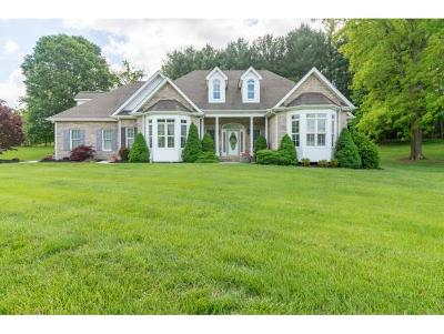 Abingdon Single Family Home For Sale: 15385 Steinman Road