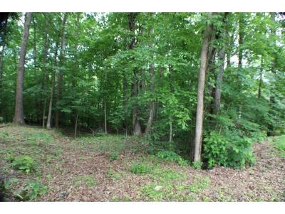 Washington-Tn County Residential Lots & Land For Sale: Valley St.