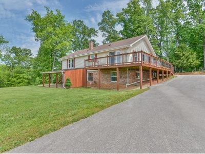 Blountville Single Family Home For Sale: 329 Old Mill Road