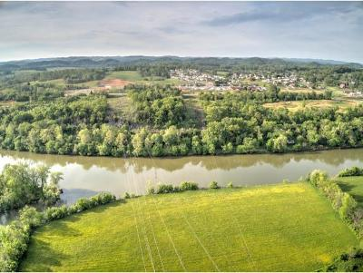 Hawkins County Residential Lots & Land For Sale: 184 Dykes Rd