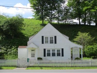 Roan Mountain Single Family Home For Sale: 250 Crabtree Rd