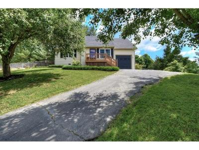 Johnson City TN Single Family Home For Sale: $199,500