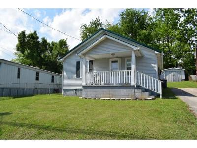 Kingsport Single Family Home For Sale: 349 Virgil Ave