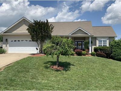 Washington-Tn County Single Family Home For Sale: 536 Sand Ridge Circle