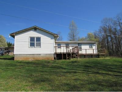 Kingsport Single Family Home For Sale: 742/740 Bluff Road