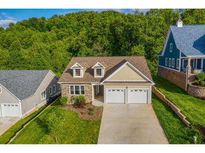 Kingsport Single Family Home For Sale: 266 Old Island Trail