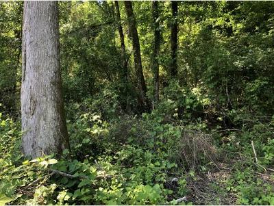 Residential Lots & Land For Sale: 633 Fugate Rd