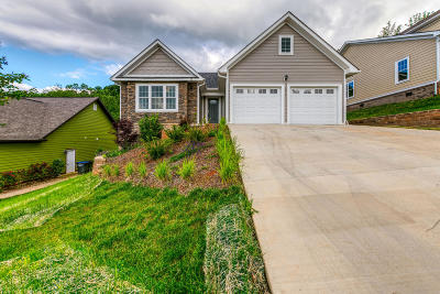 Kingsport Single Family Home For Sale: 270 Old Island Trail