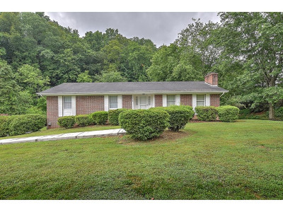 Blountville Single Family Home For Sale: 1960 Feathers Chapel Road
