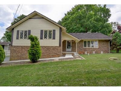 Kingsport Single Family Home For Sale: 3516 McIntosh Drive