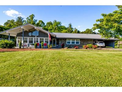 Kingsport Single Family Home For Sale: 6321 Booth Court