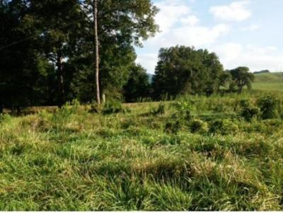 Residential Lots & Land For Sale: Lot 8 Dry Hollow
