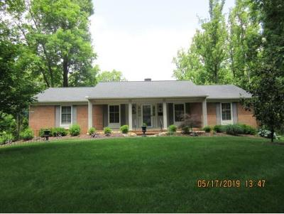 Johnson City Single Family Home For Sale: 1303 Sherwood