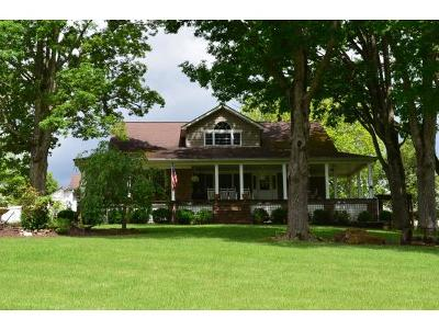 Rogersville Single Family Home For Sale: 1129 Webster Valley Rd