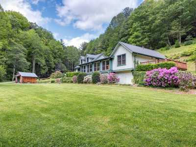 Roan Mountain Single Family Home For Sale: 200 Old Buck Mountain Rd