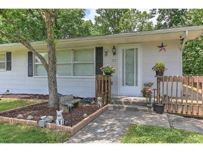 Bristol TN Single Family Home For Sale: $105,000