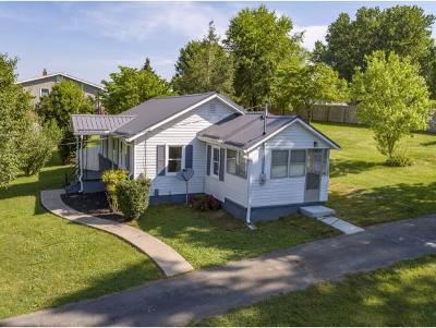 Washington-Tn County Single Family Home For Sale: 172 Hopper Road