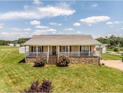 Greene County Single Family Home For Sale: 112 Gibson Loop