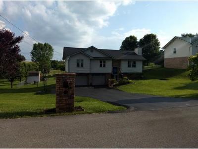 Washington-Tn County Single Family Home For Sale: 115 Hollow View Drive