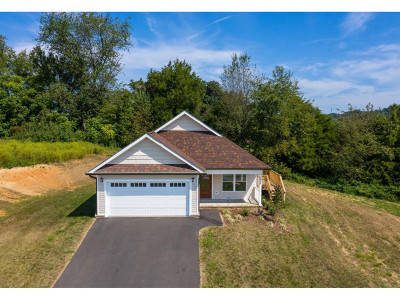 Kingsport Single Family Home For Sale: 2910 Southbridge Road