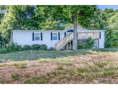 Single Family Home For Sale: 308 Payne Ridge Road