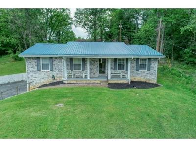 Kingsport Single Family Home For Sale: 905 Poplar Grove Road