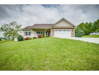 Jonesborough Single Family Home For Sale: 251 Couch Road