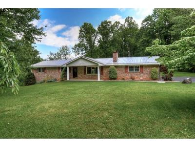 Single Family Home For Sale: 173 Bunton Rd