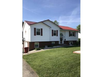 Single Family Home For Sale: 228 Chickasaw