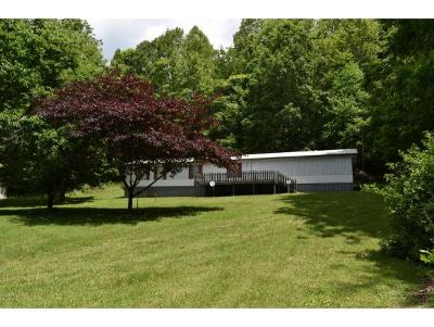 Elizabethton Single Family Home For Sale: 205 Dry Branch Road