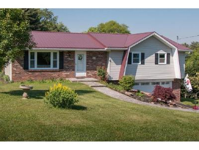 Abingdon Single Family Home For Sale: 386 Sunset Drive