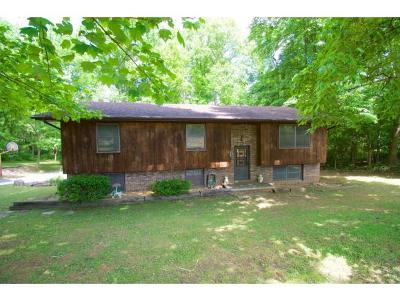 Kingsport Single Family Home For Sale: 132 Holiday Hills Rd