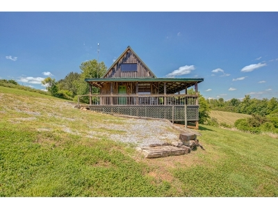 Single Family Home For Sale: 301 Sneed Lane