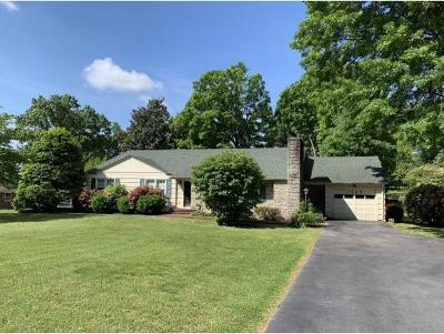 Bristol Single Family Home For Sale: 1124 Weaver Pike
