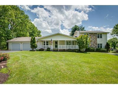 Single Family Home For Sale: 132 Leach Circle