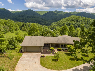Elizabethton Single Family Home For Sale: 130 Low Gap Road