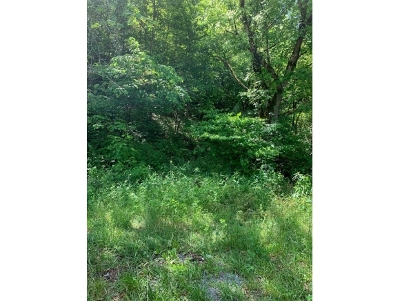 Residential Lots & Land For Sale: Rock Hill Rd