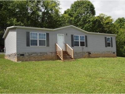 Abingdon Single Family Home For Sale: 27180 Shortsville Road